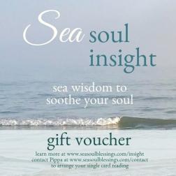Sea Soul Insight gift voucher