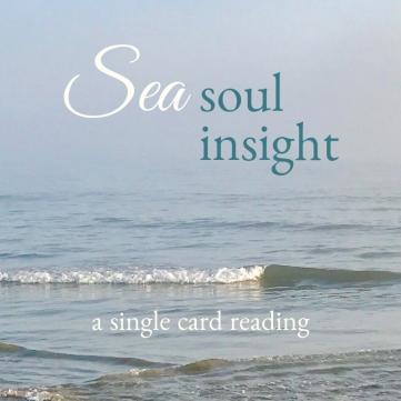 Sea Soul Insight