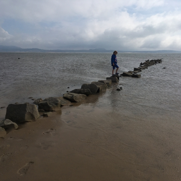 A boy stands on a promontory of rocks heading out to sea